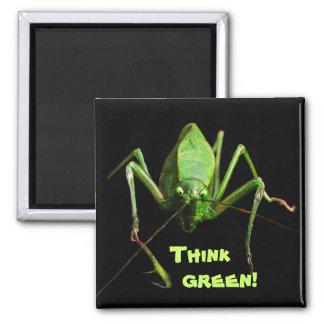 Katydid Think Green Magnet
