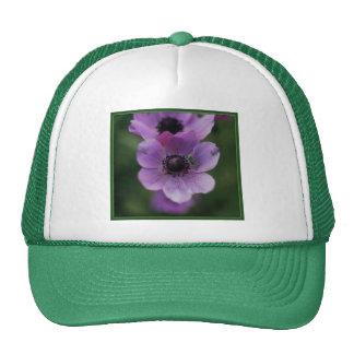 Katydid verde en anémonas púrpuras gorro de camionero