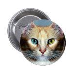 Katz Button