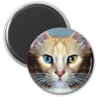 Katz Magnet