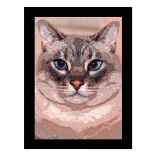 Katz Tarjetas Postales
