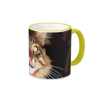 katz tazas de café