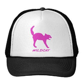 katze kätzchen wildkatze gato salvaje mieze cat wi gorros bordados