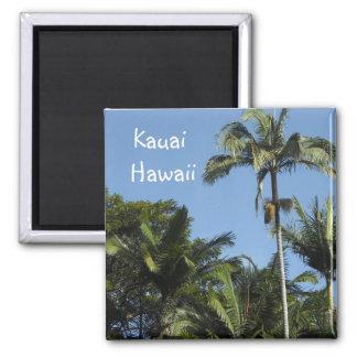 Kauai Hawaii 2 Inch Square Magnet