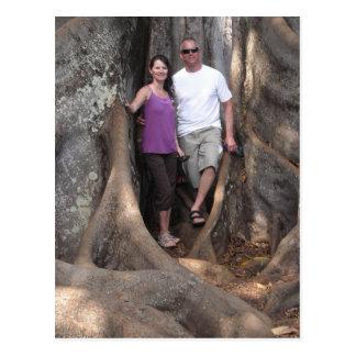 Kauai Hawaii - árboles de la película de Jurassic Postal