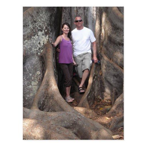 Kauai Hawaii - árboles de la película de Jurassic  Postales