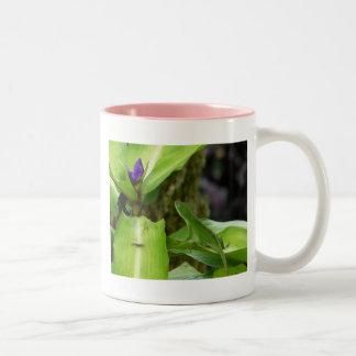 Kauai Hawaii Chameleon Two-Tone Coffee Mug