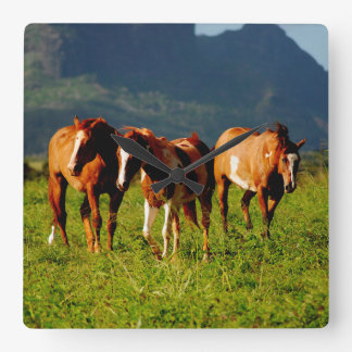 Kauai, Hawaii - Horses - Clock Design