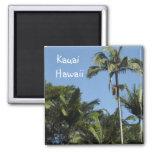 Kauai Hawaii Imán Cuadrado