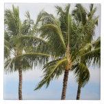 Kauai Palm trees Tiles