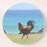 Kauai rooster beverage coasters