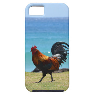Kauai rooster iPhone 5 cases