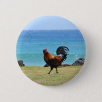 Kauai rooster pinback button