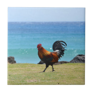 Kauai rooster small square tile