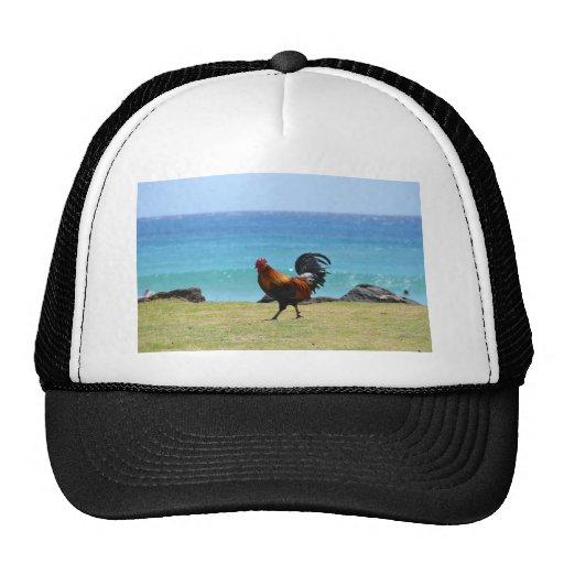 Kauai rooster trucker hat