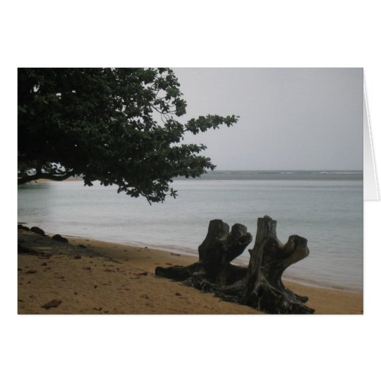 Kauai solitude card