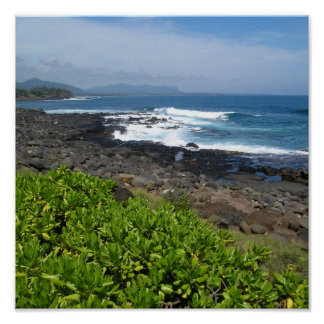 Kauai succulents 2 posters