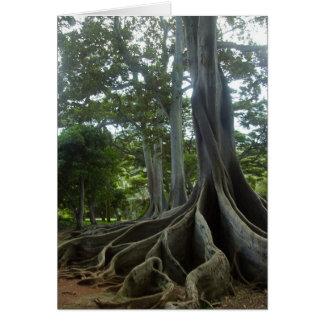 Kauai Tree from Jurassic Park (eggs) Greeting Card