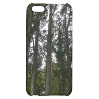 Kauri Forest iPhone 5C Covers