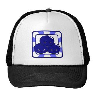 Kawaii Blueberry Basket (Boy) Trucker Hat