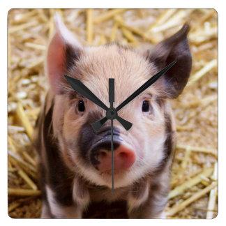 Kawaii cute adorable farm baby piglet pig animal square wall clock