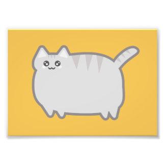 Kawaii Fat Cat Photo Print
