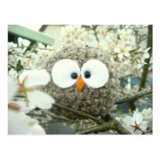 Kawaii Oliver the Owl Postcard