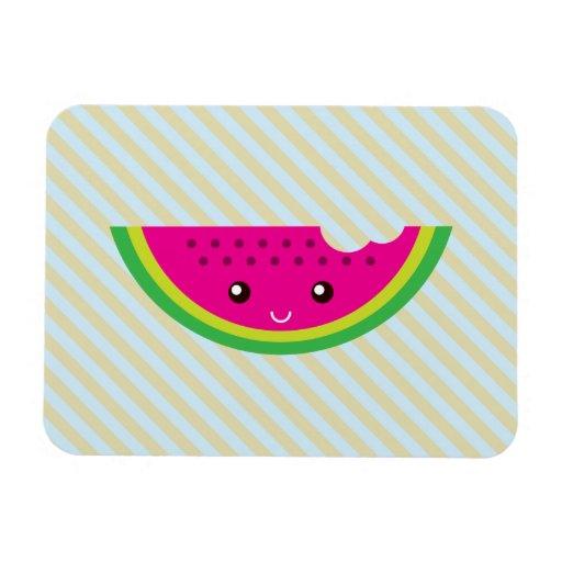 Kawaii watermelon rectangle magnets