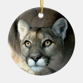 Kaya Ornament