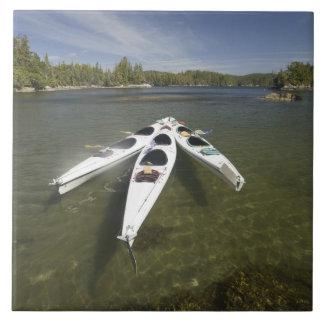 Kayak Fleet at Rest During Late Afternoon at Ceramic Tile
