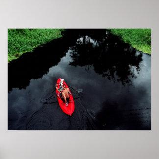 Kayaker en la impresión del río de Loxahatchee Poster