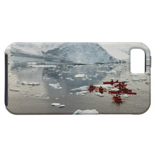 Kayaking Antarctica iPhone 5 Cases