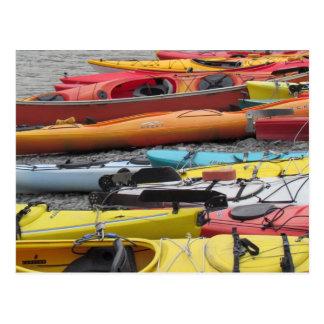 Kayaks in Alaska Postcard