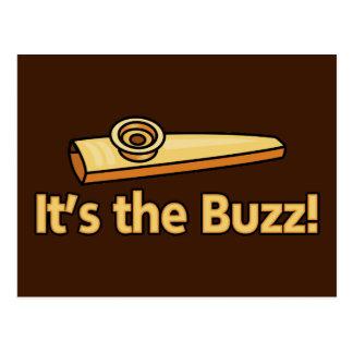 Kazoo Buzz Postcard
