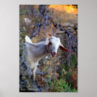 Kea – Cyclades Print