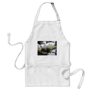 Kea: El loro alpino Delantal