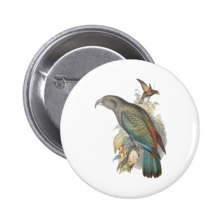 Kea (small only) pins