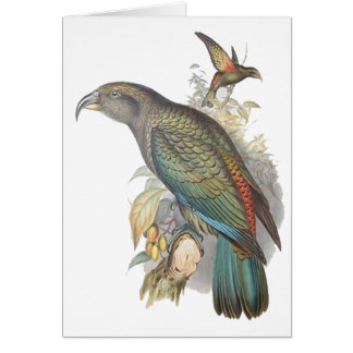 Kea (small only) card