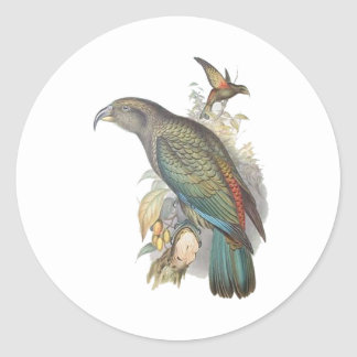 Kea (small only) stickers