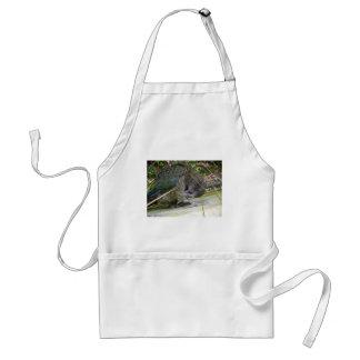 Kea: The Alpine Parrot Aprons
