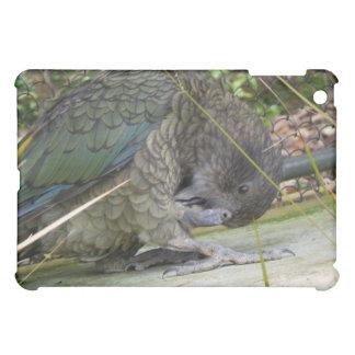 Kea: The Alpine Parrot iPad Mini Covers