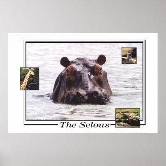 Keeboko en la reserva del juego de Selous Posters