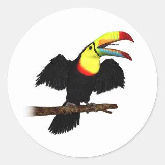 Keel-Bill Toucan Classic Round Sticker