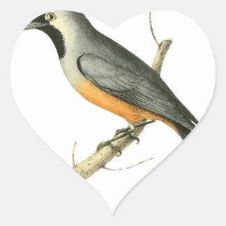 Keel-billed Flycatcher Bird Illustration by Willia Heart Sticker