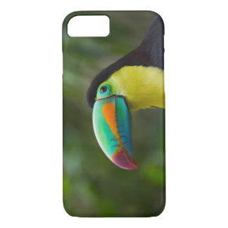 Keel-billed toucan on tree branch, Panama iPhone 8/7 Case