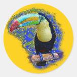 Keel Billed  / Toucan popart Round Sticker