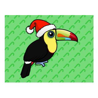 Keel-billed Toucan Santa Postcard