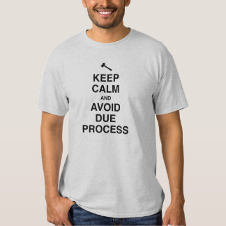 Keep Calm and Avoid Due Process Shirt