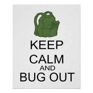 Keep Calm And Bug Out Poster