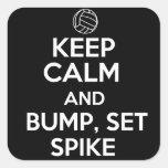 Keep Calm and Bump, Set, Spike Square Sticker